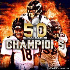 Super Bowl: Denver Broncos siegen gegen Carolina Panthers - DIE WELT