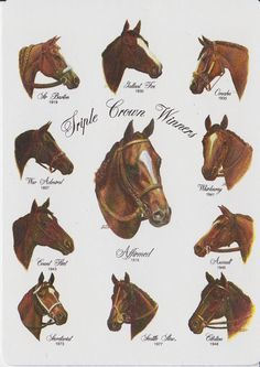 Horse racing's Triple Crown winners.