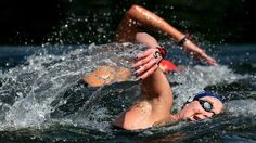 GB's Keri-Anne Payne - Keri-Anne Payne fourth in 10km open water swim.      Great Britain's Keri-Anne Payne finishes fourth in the women's open water 10km swim, with Hungary's Eva Risztov taking gold.    Payne, who won silver in Beijing, was in the leading pack throughout the race, which she completed in a time of one hour 57 minutes.    The Stockport based swimmer was Great Britain's first athlete to qualify for the Olympics, when she won gold at the World Championships in Shenghai.