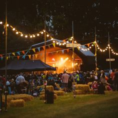 tbt graze festival 2015! #festival #entertainment #bunting #lights #winchester #twyford #tbt #graze #bands #musuc #performance