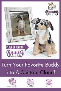 Create a custom stuffed animal of your pet with our simple ordering process. Upload a photo, enter unique details & submit! Order the original plush cuddle clone now! Cute Puppies, Cute Dogs, Dogs And Puppies, Doggies, Cute Funny Animals, Cute Baby Animals, Pet Organization, Dog Tattoos, The Originals