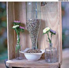 Garrafas de vinho podem virar terrários. Peça a um vidraceiro que faça um furo de 4 cm de diâmetro na lateral de cada uma delas. Coloque um pouco de terra, mudas de hera e pendure.