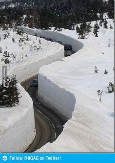 Meanwhile in Lebanon