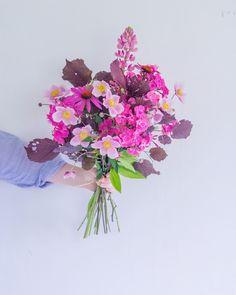 pink flowers. garden
