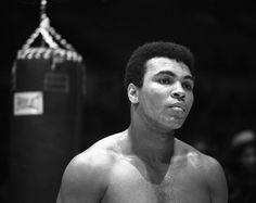 Es considerado como uno de los más grandes boxeadores de todas las generaciones. A los 18 años, Muhammad Ali ya había ganado la medalla de oro de los Juegos Olímpicos de Roma, además de obtener a lo largo de su carrera el título de campeón indiscutible en tres ocasiones. Pero no sólo fue aclamado por su nuevo estilo de boxeo y sus aplastantes victorias sino por ser una figura con influencia social en los 60