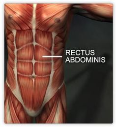 Best home exercises for the treatment of diastasis recti. What it is, why you get it, and what are the best exercises to help you feel better! Ab Workout Men, Friday Workout, Lower Ab Workouts, Easy Workouts, Core Workouts, What Is Diastasis Recti, Rectus Abdominis Muscle, Fitness Tips, Health Fitness
