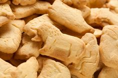 11 Wild Facts About Animal Crackers | #9 The Monkey Has Been the Only Animal to Wear Clothes.