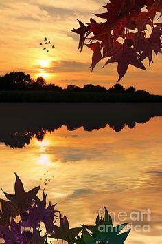 beautiful sunset...