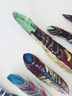 Painted Feathers