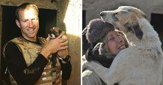 Arriesgan sus vidas para salvar animales en Afganistán