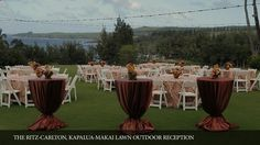 Stunning ocean view backdrop for a wedding. Ritz Carlton Kapalua Maui