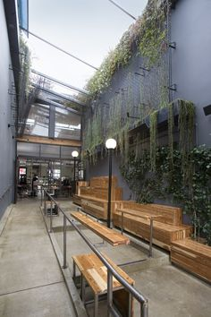 Intelligentsia: Venice, CA - MASS Architecture Design Build