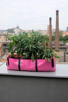 Urban gardening with #TheGreenBlock Urban Gardening, Grow Your Own, Green Bag, North America, Planters, Bloom, Yard, Pockets, Patio