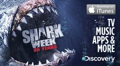 Shark Week 25 Years Premieres on Discovery Channel Sunday, August 12 @ 9P EST!!!!