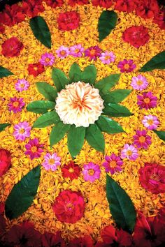 Making Rangoli designs at your house during any event is what everyone tries to achieve. Here are 75 simple rangoli designs for 2020 that are easy to make and will look the best with minimal efforts. Flower Rangoli, Flower Mandala, Flower Art, Diwali Decorations, Festival Decorations, Flower Decorations, Beautiful Rangoli Designs, Kolam Designs, Namaste