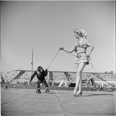 Circus [Woman with a monkey on roller skates.] Stanley Kubrick MCNY Collections Portal