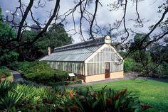 Wedding ceremony palm house royal botanic gardens Sydney