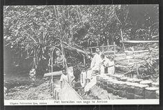 Ambon Preparing Sago Moluccas Indonesia CA 1906 | eBay