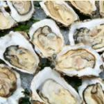Commercial shellfish farmers who use the ocean to grow their crops off the nation's coastline now have the same kind of protection against crop losses as do people who farm on land, due to a recent change in federal policy.