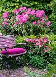 petit coin de plaisir au fond d'un jardin