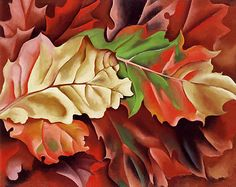 Georgia O'Keeffe  Autumn Leaves - Lake George, N.Y.  1924  oil on canvas  © Columbus Museum of Art, Ohio