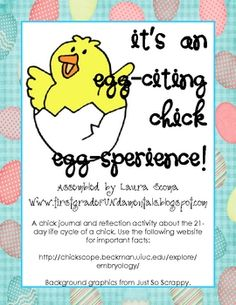 :) great template to keep data during chick life cycle Kindergarten Science, Science Classroom, Teaching Science, Science Activities, Life Science, Science Ideas, Preschool, Project Based Learning, Kids Learning