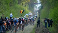 Awesome shot of the Bois de Wallers section during Paris - Roubaix 2014