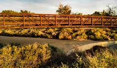 The Mini-Bridge Not For Water by DonaldPritchett
