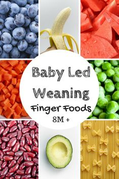"""Around 8 months of age baby will begin to develop his """"pincer grasp"""" and offering foods that are more difficult to pick up can help that along! Read about this and more Baby Led Weaning info at family 8 Month Old Baby Food, Baby Food 8 Months, 8 Month Baby, Baby Led Weaning First Foods, Baby Weaning, Weaning Toddler, Baby Food Recipes, Whole Food Recipes, Family Recipes"""