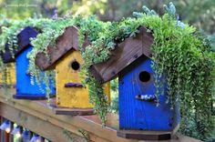 the garden-roof coop: Rebecca's Bird Gardens - DIY living Roof Birdhouse