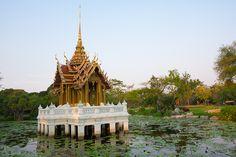 Plub Pla Yod in lotus pond at Suanluang public park Bangkok Lotus Pond, Travel Agency, Bangkok, Big Ben, Thailand, Public, Park, Holiday, Vacations