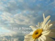 Feeding my faith and soul daily! :) <3  Casting Crowns - Who am I