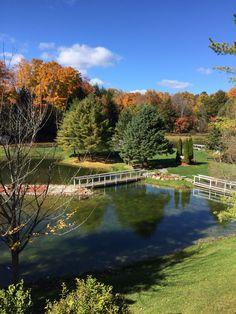 Fall @trilliumtrails Wedding Venues, Trail, Wedding Inspiration, River, Outdoor, Decor, Wedding Reception Venues, Outdoors, Decorating