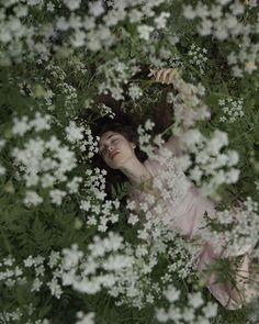 "Nicholas Fols auf Instagram: ""my ethereal girl @silviabandera_ wakes up in the flowers"" Love Flowers, Wake Up, Ethereal, Dandelion, Garden, Nature, Plants, Inspiration, Instagram"