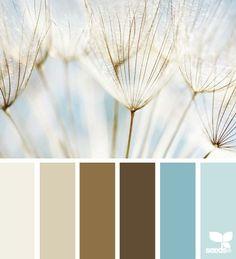 PALETTE: Color Wish