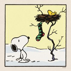 Woodstock hangs his Christmas Stocking for Snoopy.