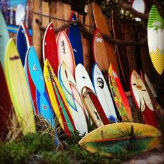 Retro surfboards; pic by Jaque Smit