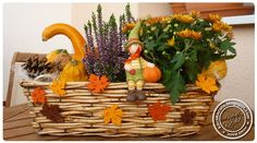 podzimní truhlíky - Hledat Googlem