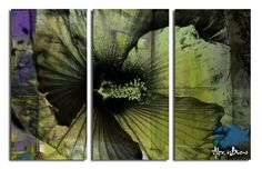 'Tropical Abstract Flower' by Alexis Bueno 3 Piece Graphic Art on Wrapped Canvas Set