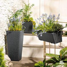 Látogass el weboldalunkra és szerezz inspirációt a kertészkedéshez! Planter Pots