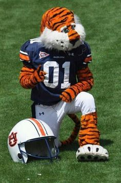 Aubie! It's that time of the year!! War Eagle!