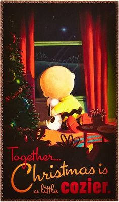 'Together Christmas is Cozier!' Charlie Brown and Snoopy. Peanuts Christmas, Christmas Humor, Christmas Time, Xmas, Christmas Animals, Christmas Christmas, Snoopy Christmas Decorations, Peanuts Cartoon, Peanuts Snoopy