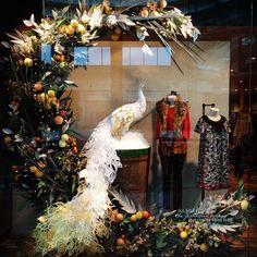 Anthropologie window