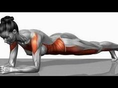 What the hell is 30 day plank challenge? It is a stability exercise where we position ourselves in a form of a plank. It is a great core exercise. Fitness Workouts, Sport Fitness, Easy Workouts, Yoga Fitness, Fitness Motivation, Core Workouts, Finding Motivation, Fitness Fun, 30 Day Plank Challenge