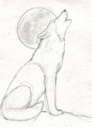 wolf howling drawings in pencil Wolf Howling Drawing, Wolf Drawing Easy, Husky Drawing, Moon Drawing, Wolf Sketch Easy, Easy Animal Drawings, Easy Pencil Drawings, Cute Drawings, Drawing Sketches
