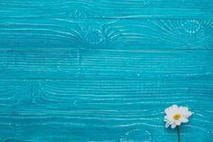 Fundo de madeira azul com margarida bonita Foto gratuita