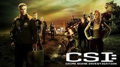 Contabilidade Financeira: Resenha: CSI