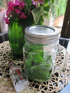 レモンバームで虫除けスプレーを作る(ハーブチンキの作り方) Herb Recipes, Healthy Recipes, Healthy Skin, Healthy Life, Chinese Herbs, Lemon Balm, Herbal Medicine, Health And Beauty, Natural Remedies