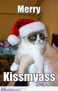Grumpy Cat Strikes Again For Christmas Very Funny Cute Sarcastic ...