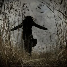Run through a meadow on a cloudy day when birds are flying above head. October Country, Southern Gothic, Set Me Free, Cloudy Day, Illustrations, The Villain, Story Inspiration, Samhain, Dark Art